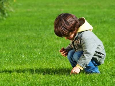 Dreng på græsplænen