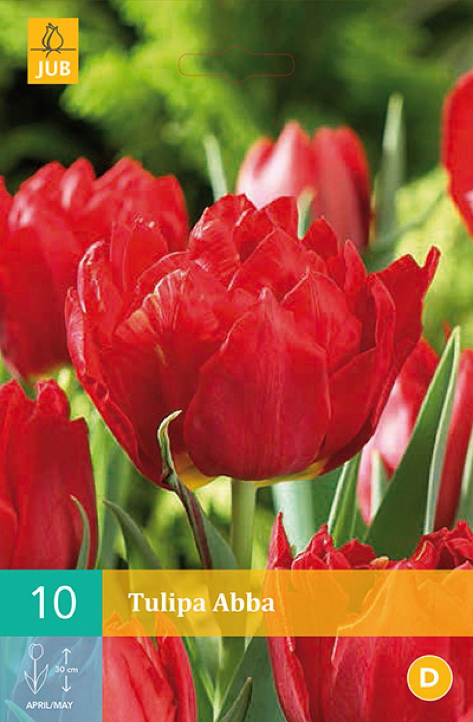 Image of   Tulipan, dobbelt tidlig Abba (nr. E40) - Tulips Double Early...