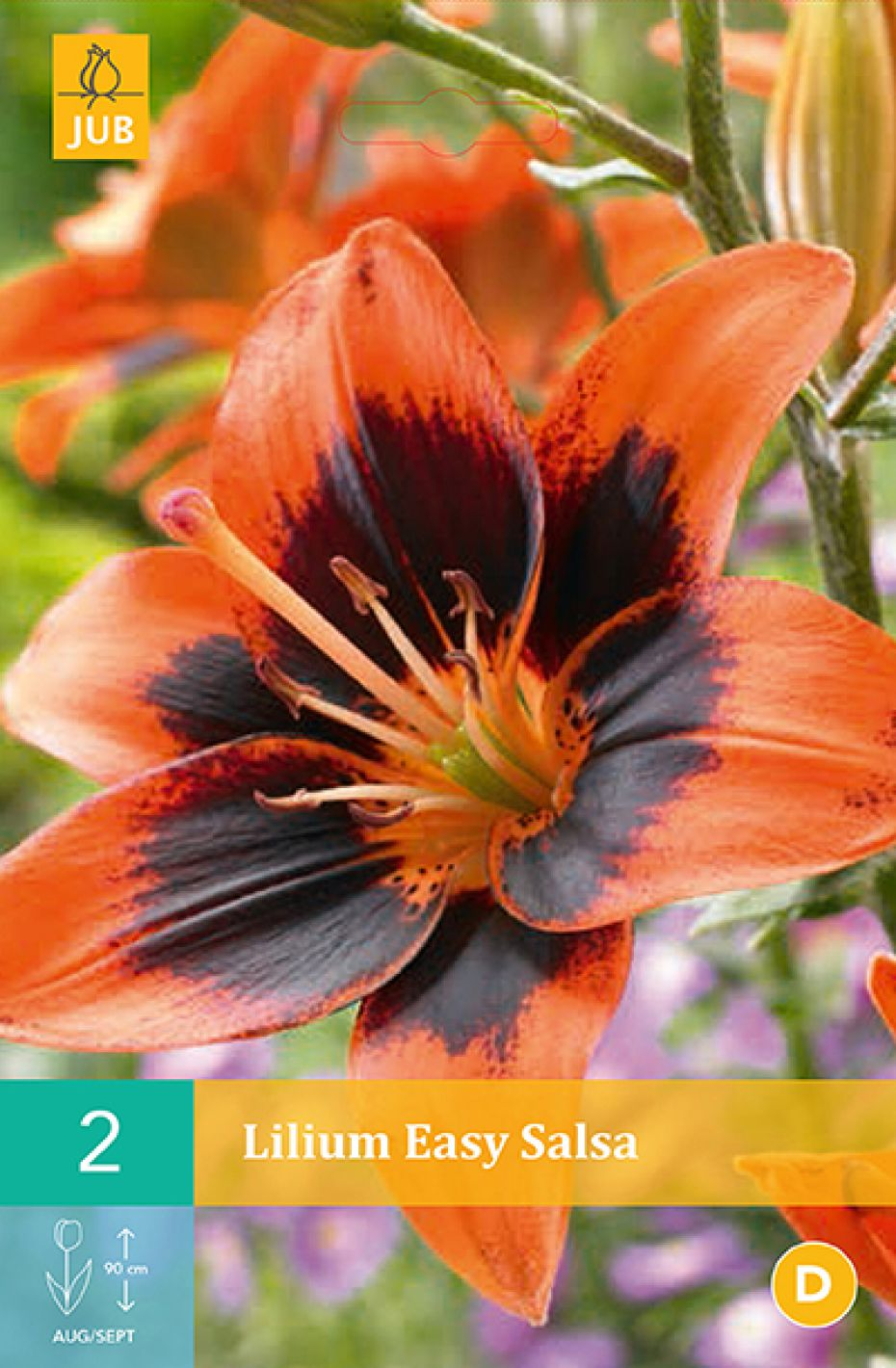 Image of   Lilje, asiatisk Easy Salsa (nr. 88) - Lilium Asiatic Easy...