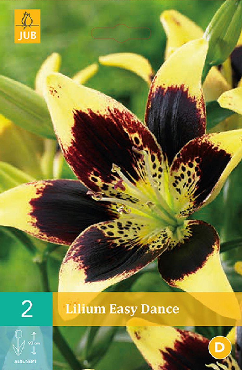 Image of   Lilje, asiatisk Easy Dance (nr. 87) - Lilium Asiatic Easy...