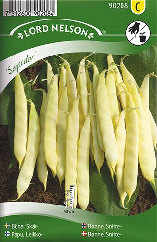 Bønne, Snitte-, Serpedor - Phaseolus vulgaris