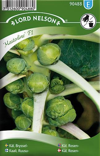 Kål, Rosen-, Masterline F1 - Brassica oleracea