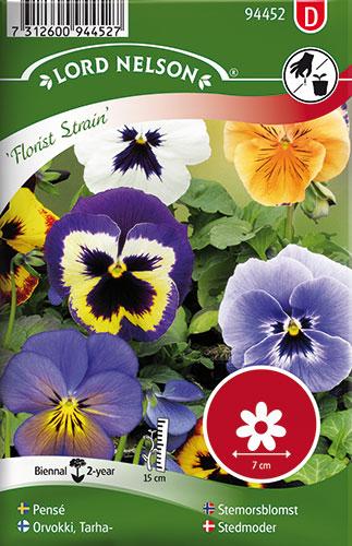 Stedmoder, Florist Strain, bl. farver - Viola x wittrockiana